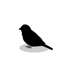 Sparrow bird black silhouette animal vector