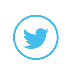 twitter icon design vector image