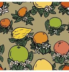 Various tropical citrus fruits vector