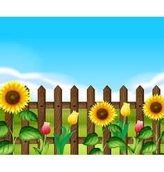 Wooden fence with flowers in the garden vector image