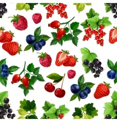 Berries fruits seamless pattern vector image
