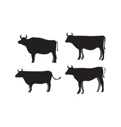 cow silhouette icon design template isolated vector image
