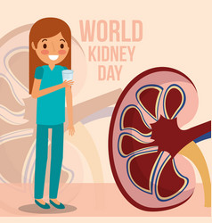 girl drinking glass water world kidney day vector image