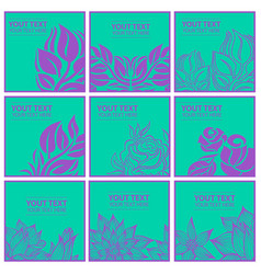 set of stylish colorful floral background vector image