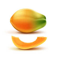 Whole and slised papaya vector