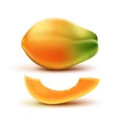 whole and slised papaya vector image