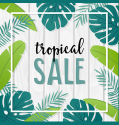 tropical sale template or banner with hand drawn vector image