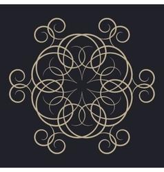 A circular ornament vector image
