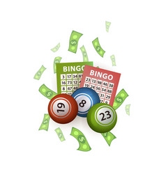 flat bingo lottery balls tickets money vector image