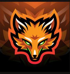 foxes head sport mascot logo vector image