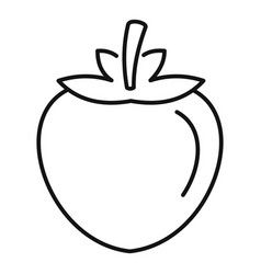 Fresh persimmon icon outline style vector