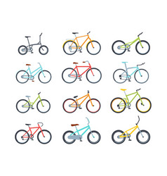 Modern colorful bicycles flat vector