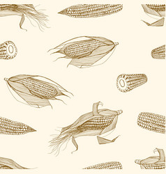 natural seamless pattern with cobs of sweet corn vector image