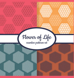 Patterns with ancient symbol flower life vector