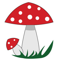 red mushrooms with white polka dots on white vector image