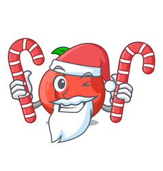 Santa with candy fruit of nectarine isolated on vector