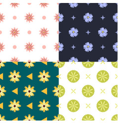 set of four seamless pattern with cute floral vector image
