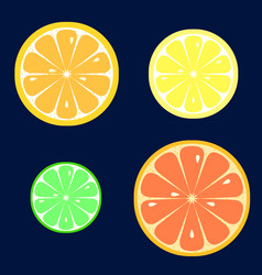 Set of slices of orange lemon lime grapefruit vector