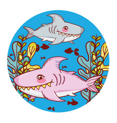 Sharks fishes animal with seaweed plants vector