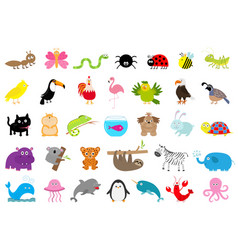 Zoo pet wild animal set cute character ant vector
