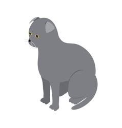 Scottish fold cat icon isometric 3d style vector image vector image