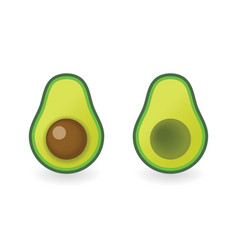 Avocado - cut with bone and cut without bone vector