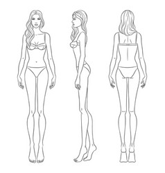 beautiful slim woman in different poses vector image