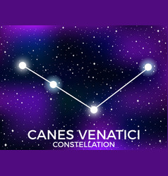 Canes venatici constellation starry night sky vector