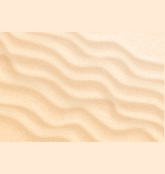 coastal beach sand waves dunes background vector image
