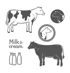 Cow emblems set vector