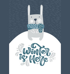 greeting card with christmas fanny hare or rabbit vector image
