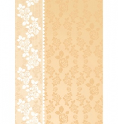 lace beige vector image