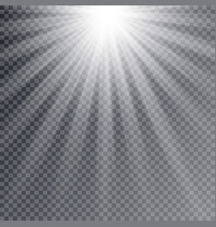 light flare special effect with rays of light vector image