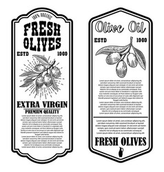 set olive oil flyer templates design element vector image