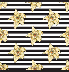 striped seamless pattern with vanilla flower vector image