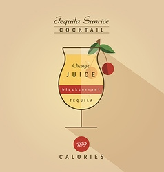Tequila sunrise cocktail drink recipe in trendy vector