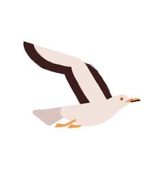 adorable flying arctic bird flat vector image