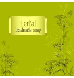 Green hand drawn herbs and plants sketch Handmade vector image