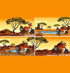 Scene with animals in savanna fields vector