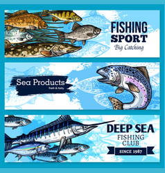 Banners of fishing club or sea fish product vector
