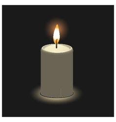 Candle in 3D view vector
