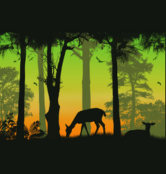 Forest wildlife poster deers silhouettes on vector