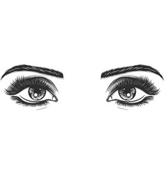 isolated black and white beautiful female eyes set vector image