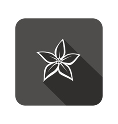 Lily flower icons Floral symbol Rounded square vector