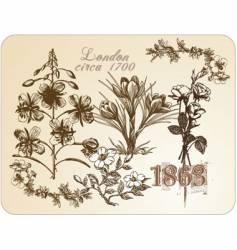 vintage floral illustrations vector image