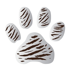 whitetigerfootprint vector image