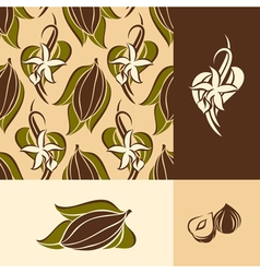 Cocoa bean with leaves and vanilla flower with pod vector image vector image