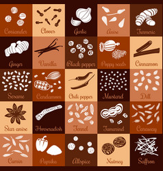 spices hand drawn big icon squared set vector image