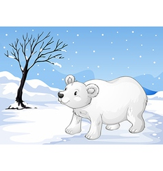 A snowbear walking vector image