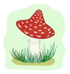 amanita in grass vector image